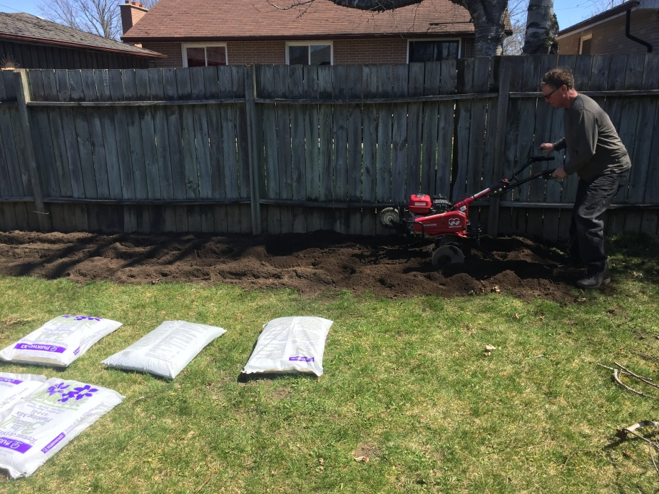 pleasurable home depot garden tillers. I rented a garden tiller from HomeDepot and brought it home into my  backyard didn t realize the size of this thing was good dad Blog Grown at Home